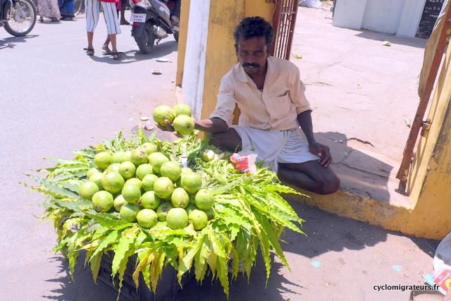 Vendeur d'oranges vertes