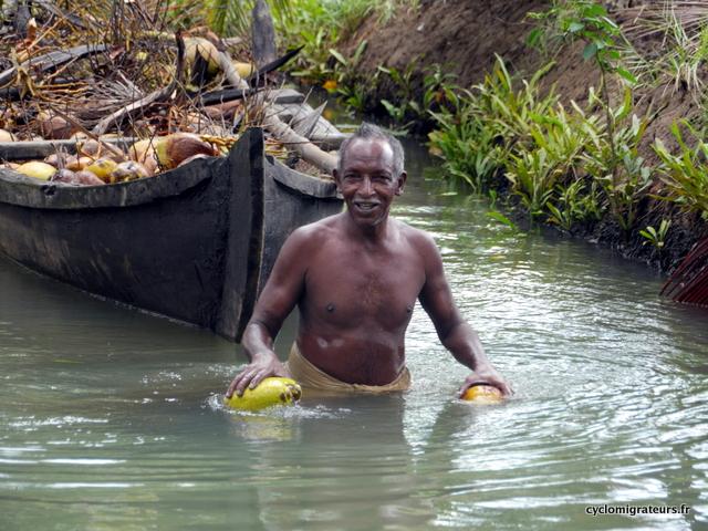 Munro Island Kollam ramasseur de coco tombée à l'eau