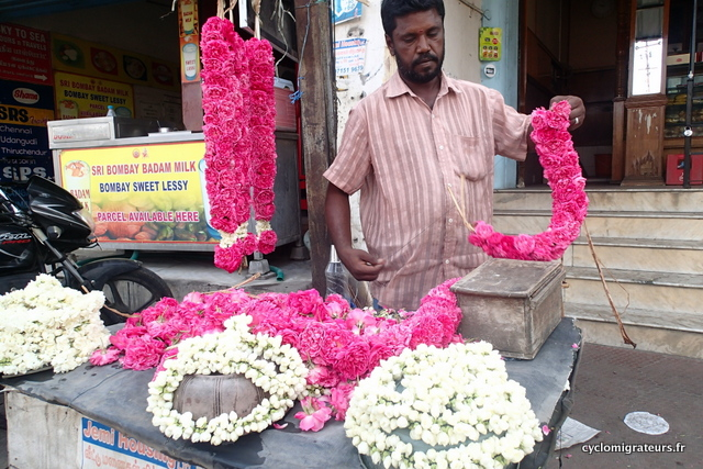 Vendeur de fleurs à dindigul