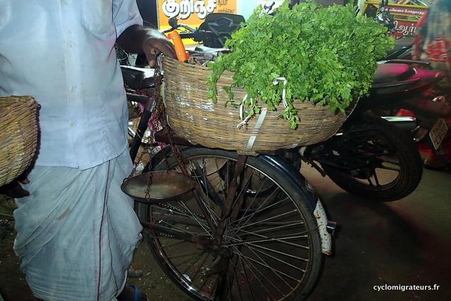 Vendeur de légume sur vélo