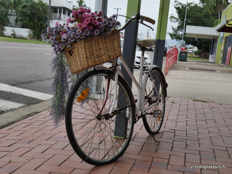 Le seul vélo vu à Ingham